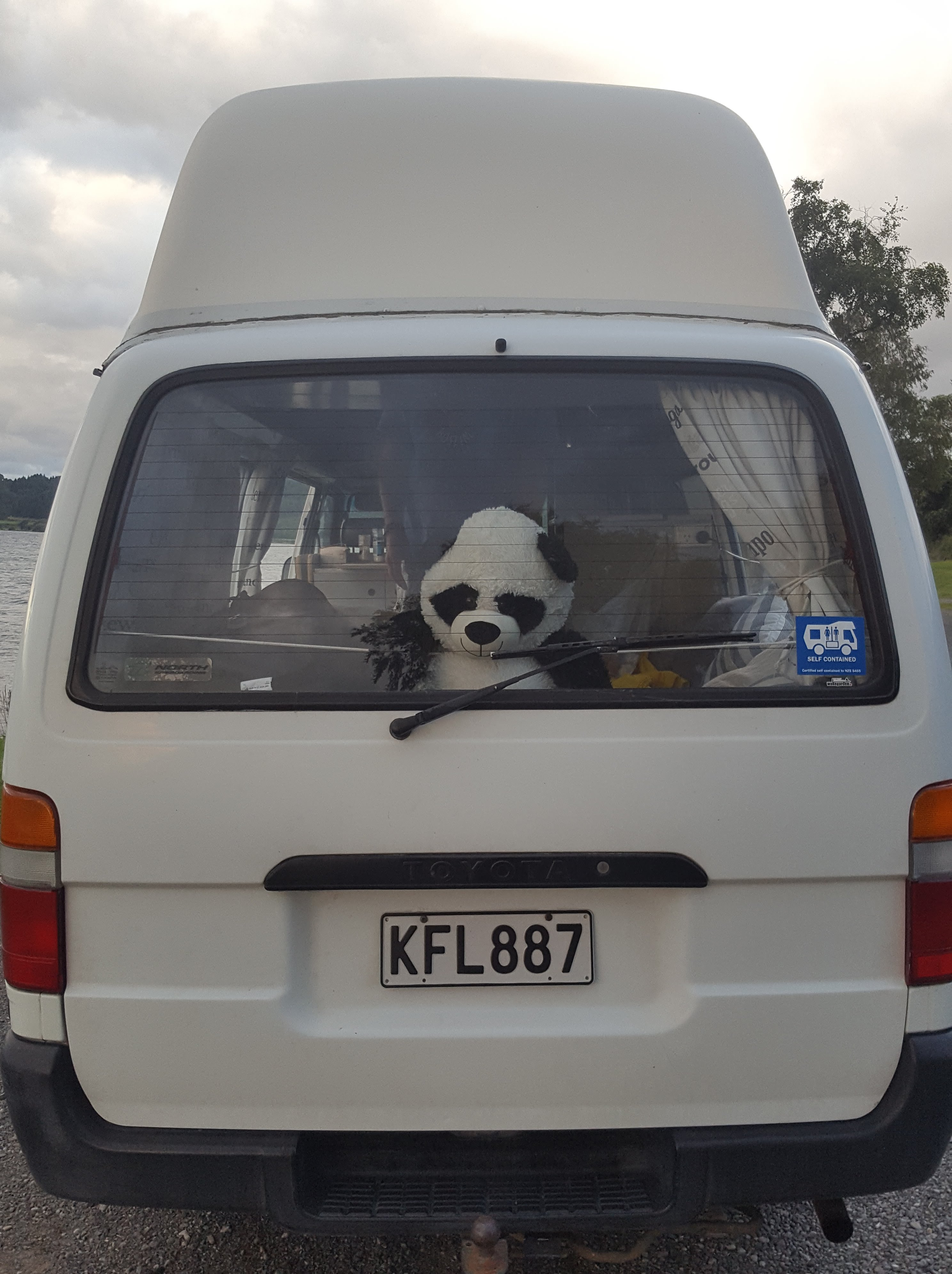 Panda soft toy looking out of a white campervan