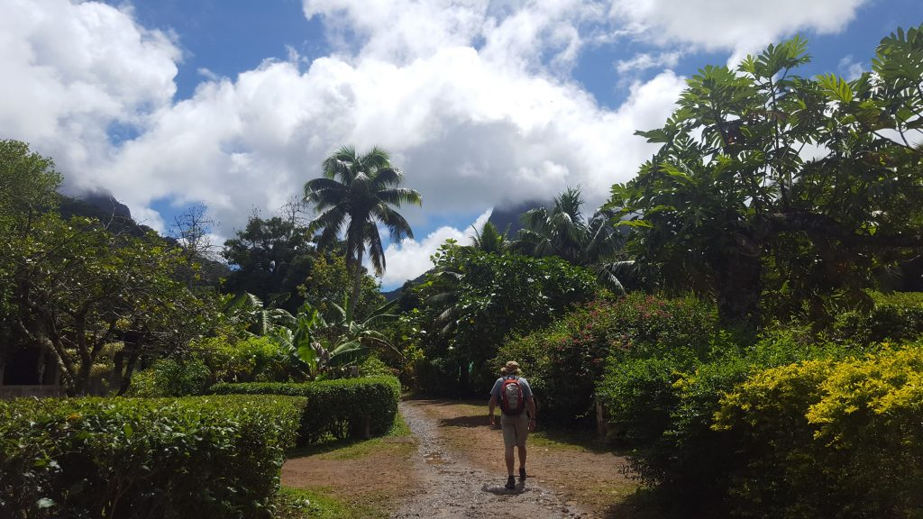 Man walking up metalled road palm tree to left, lush vegetation all around, cloudy sky but sunshine.