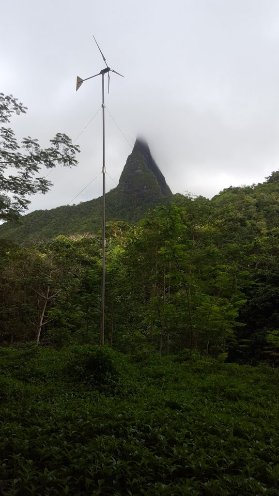 A windmill in bush area with a mountainn in the background